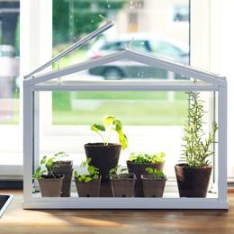 Drivhus fra IKEA til vindueskarm