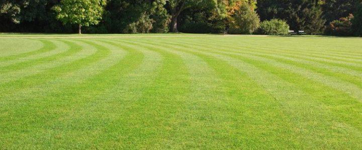 Gødning græsplæne hvornår?