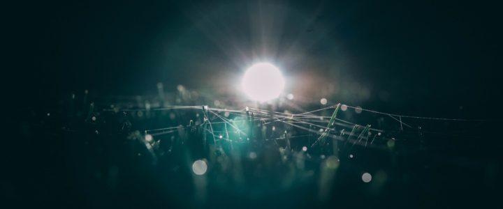 Sådan får du billig belysning til haven