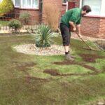 topdressing græsplæne
