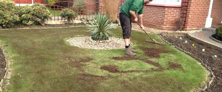 Topdressing – Sådan reparerer du din græsplæne